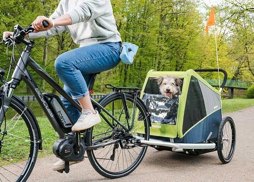 croozer fietskar grote hond xl